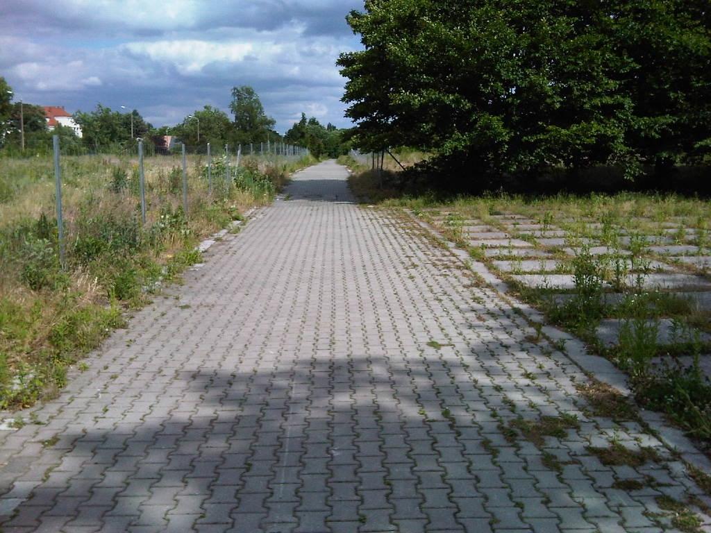 Noch sieht es nicht nach Wald aus, der gepflasterte Weg auch nicht.