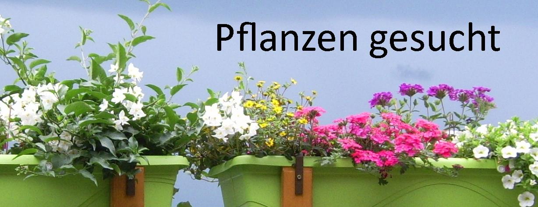 Pflanzen gesucht