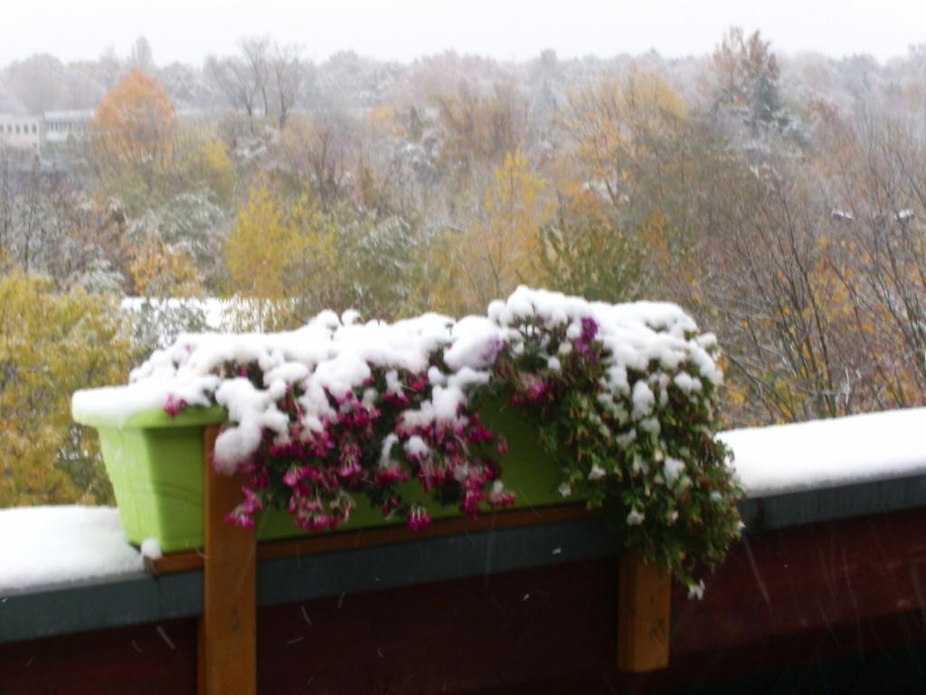 plötzlicher Wintereinbruch auf dem Balkon